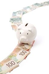 Piggy bank on money trail