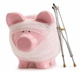Bandaged pig