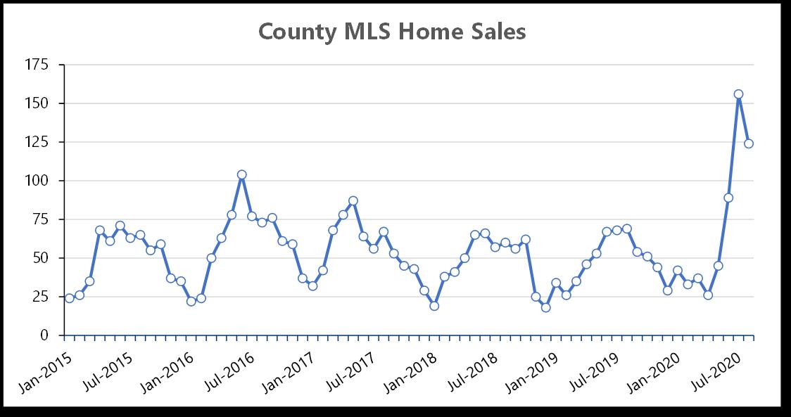 Monthly-Sales-All-Types-Thru-2020-08