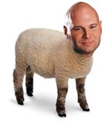 Brad Lamb