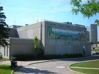 Hillmountpublicschool