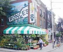 Roncysigncl216